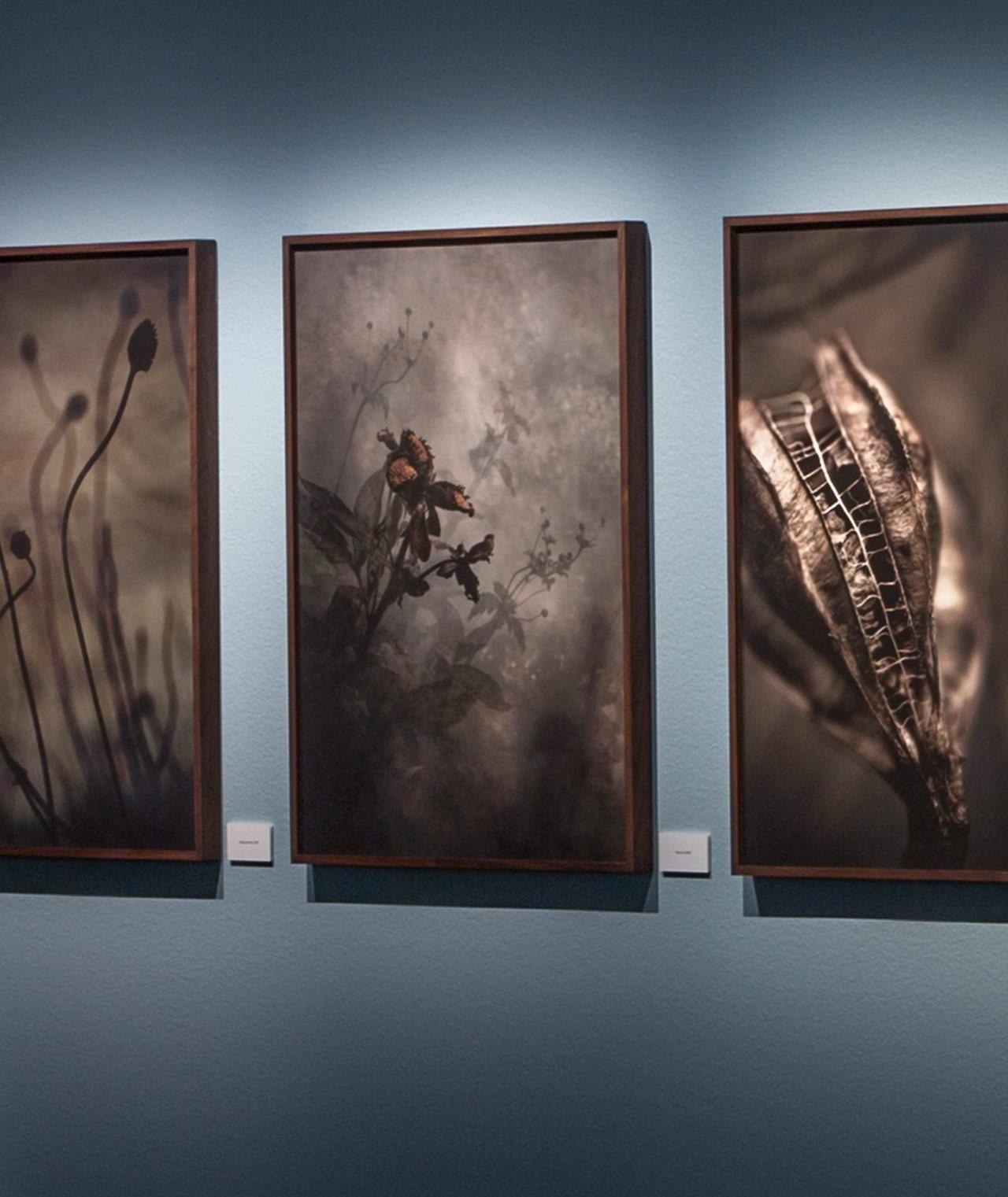 Exhibition – Fotografiska museet