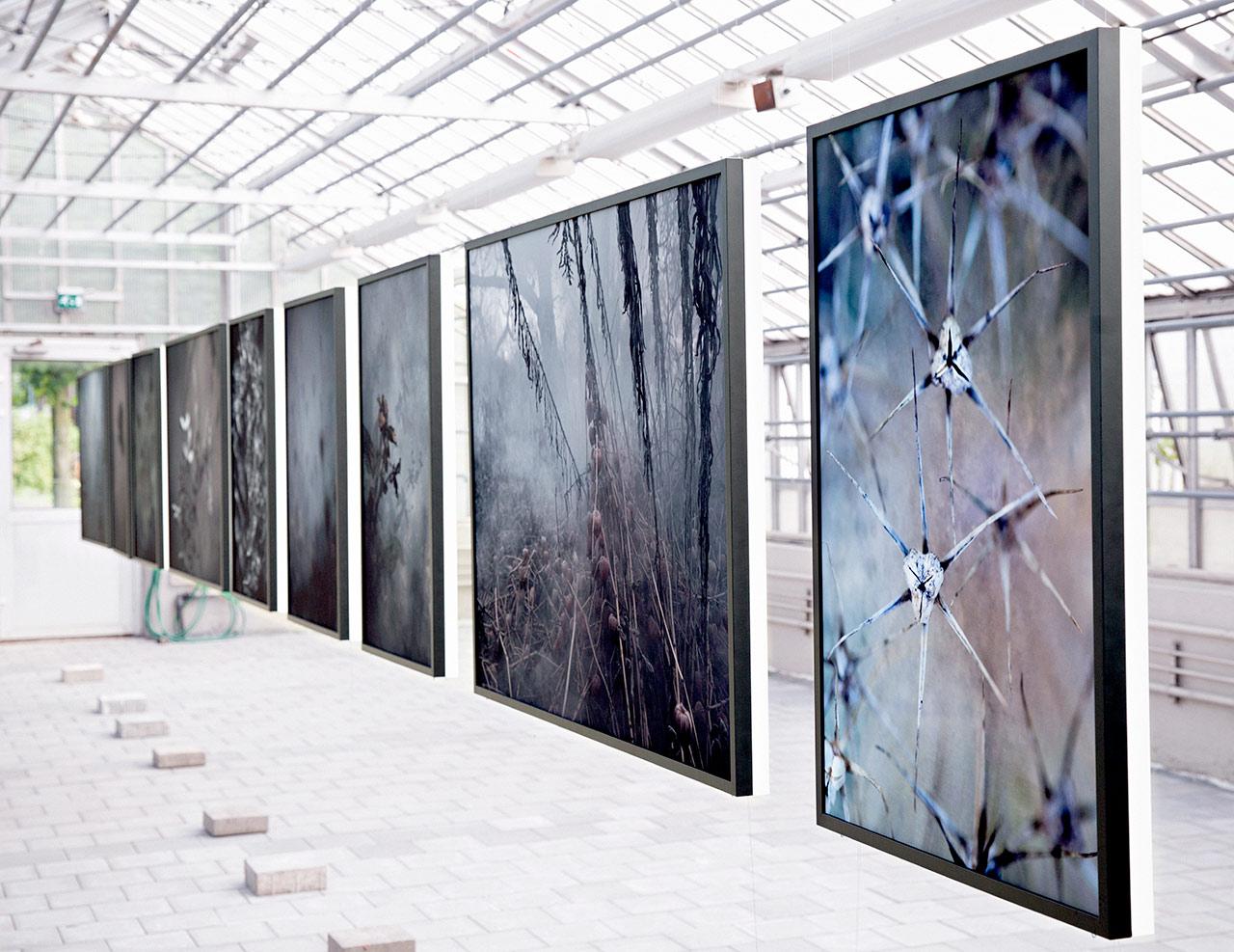 Exhibition – Trädgårdsföreningen Gothenburg